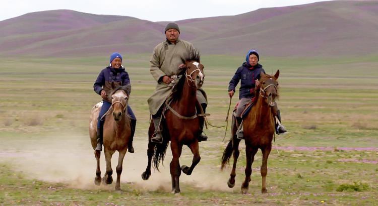 Russlands Pferde 1/5: Steppenreiter und Ackergäule