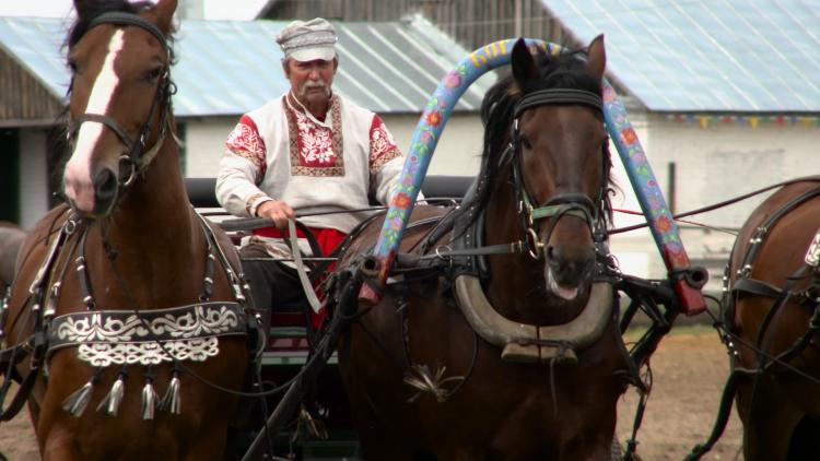 Russlands Pferde 3/5: Kämpfer und Könner